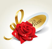 Red rose in dewdrops with golden ribbon and paper sticker. — Stock Vector