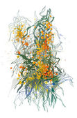 Sea-buckthorn berries. A colorful sketch made by a pen with spot — Stock vektor