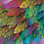 Seamless background of exotic colorful feathers, close up — Vector de stock