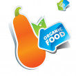 Icon pumpkin with arrow by organic food. Vector illustration — Imagen vectorial