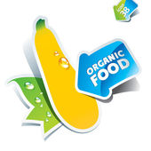 Icon zucchini with arrow by organic food. Vector illustration — Stock Vector