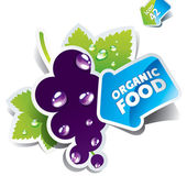 Icon currant with arrow by organic food. Vector illustration — Stock Vector