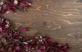 Branches and blossoms on wooden background — Stock Photo