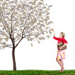 A woman reaching up picking money off a tree on white background — Stock Photo