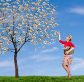 A woman reaching up picking money off a tree — Stock Photo