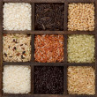 Rice nine varieties in a printers box - Stock Photo