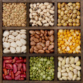 Bean background nine varieties in a printers box — Stock Photo