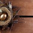 A golden nest egg — Stock Photo #9410464