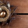 Stock Photo: Golden nest egg