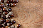 Acorns on a wooden background — Stock Photo