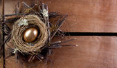 A golden nest egg — Stock Photo