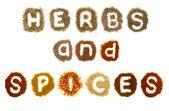 çeşitli otlar ve baharatlar sözcükleri yazım denetimi — Stok fotoğraf