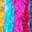 Multi-colored feather boas - Stock Photo