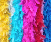 Multi-colored feather boas — Stock Photo
