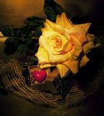 Retro still life - flor y símbolo de corazón rojo — Foto de Stock