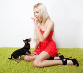 Beautiful female blonde feeds on small dog. Studio shot — Stock Photo