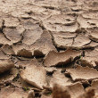 Stock Photo: Draugh soil