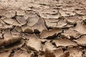 Draugh soil — Stock Photo