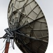 Closeup of suttelitte dish - Stock Photo