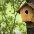 Stock Photo: Birdhouse in the spring forest ; natural background