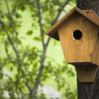 Birdhouse in the spring forest  ;  natural background - Stock Photo