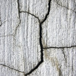Cracked cement surface ; abstract dirty grunge background — Stock Photo #8709676