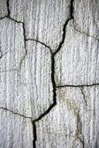 Cracked cement surface ; abstract dirty grunge background — Stock fotografie