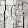 Royalty-Free Stock Photo: Cracked cement surface ;  abstract dirty grunge background