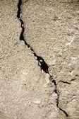 Fissure à ciment — Photo