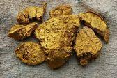 Gouden goudklompje — Stockfoto