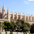 Cathedral of Palmde Mallorca, Spain — Stock Photo #10448172