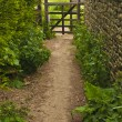 Stock Photo: Country path