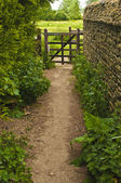 Country path — Foto de Stock