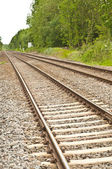 Straight railway tracks — Stock Photo