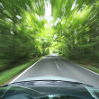 Car driving fast into forest — Stock Photo