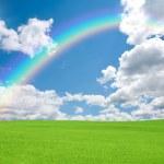 yeşil alan ve gökkuşağı — Stok fotoğraf