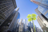 Skyscraper and clover — Stock Photo