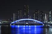 Eidai Bridge and Sumida River in Tokyo, Japan — Zdjęcie stockowe