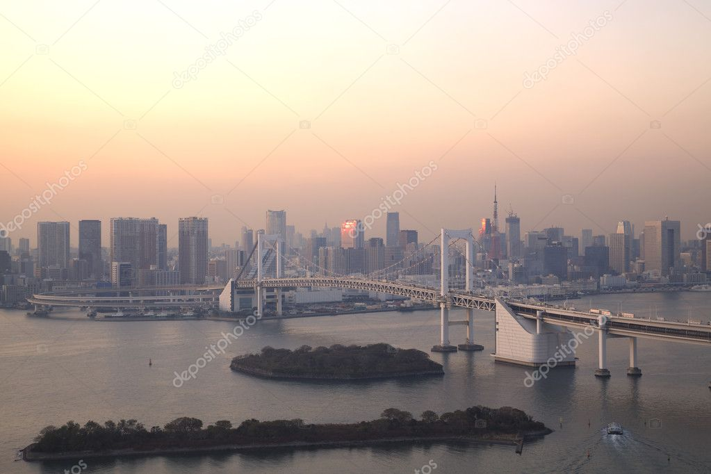 View of Tokyo downtown at night with Rainbow Bridge — Stock Photo #8812800
