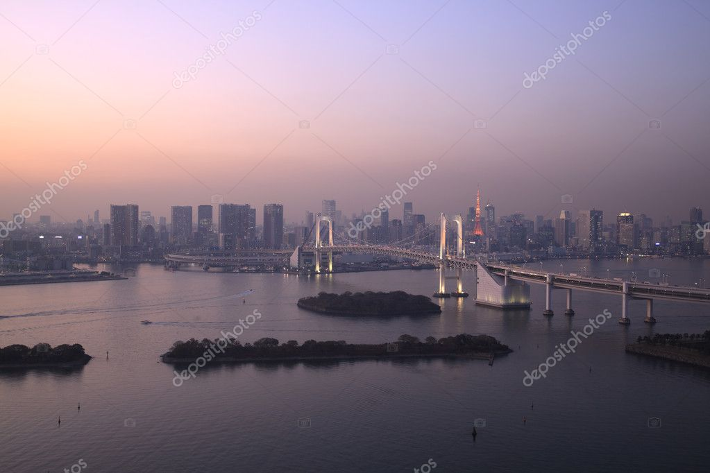 View of Tokyo downtown at night with Rainbow Bridge  Photo #8812803