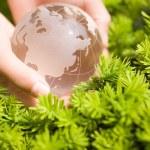 Hand holding a glass globe — Stock Photo