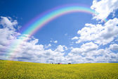 Rainbow Over Countryside — Stock Photo