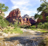 Zion National Park — 图库照片