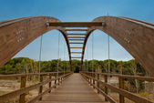 Wooden bridge leads into the woods — Stock Photo