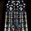 The mosaic window in cathedral of Saint-Jean, Lyon, France. — Stock Photo #8803372