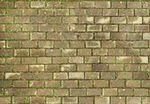 Paving tile — Stock Photo