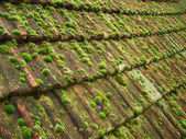 Image de vieille tuile sur le toit du village — Photo