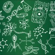 Biology sketches on school board — Imagen vectorial