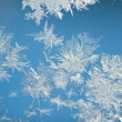 Frozen window — Stock Photo #9123102