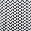 Black Net — Stock Photo #9123156